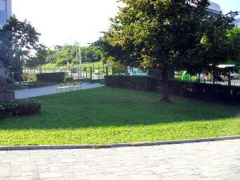 úprava parku