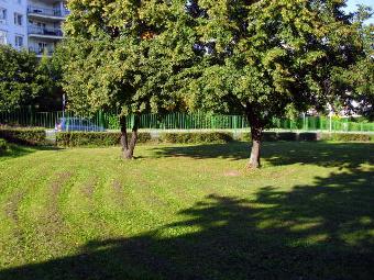 Úprava travnatých ploch